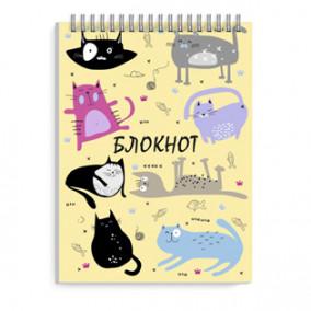Блокнот А6 80л. Смешные коты, гребень, Феникс